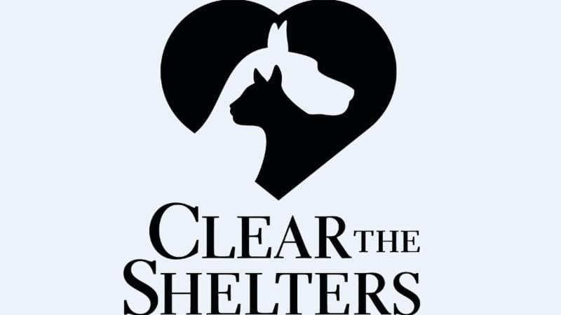 Clear the Shelters AND the Sheds
