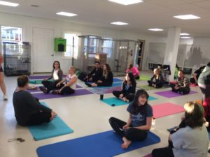 Cat Yoga @ Animal Care Sanctuary  | East Smithfield | Pennsylvania | United States