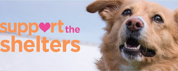Support the Shelters Sweepstakes