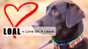 LOAL = Love On A Leash @ ACS E. Smithfield