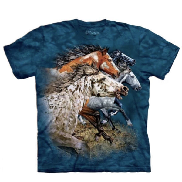 Find 13 Horses