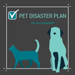 Make a Disaster Plan for your Pets