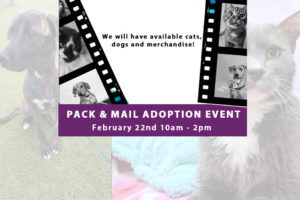 Pack & Mail Adoption Event @ Kent Avenue