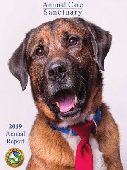Animal Care Sanctuary's 2019 Annual Report