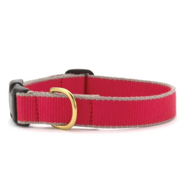 Green Market Red and Gray Dog Collar at Animal Care Sanctuary