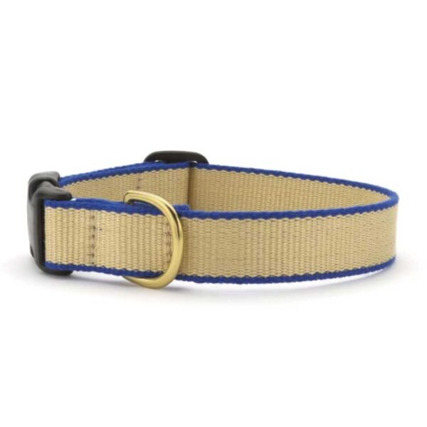 Green Market Tan and Royal Blue Dog Collar available at Animal Care Sanctuary