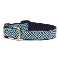 Aqua Plaid Dog Collar Available at Animal Care Sanctuary