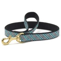 Aqua Plaid Dog Leash available at Animal Care Sanctuary