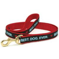 Best Dog Ever Leash - available at Animal Care Sanctuary