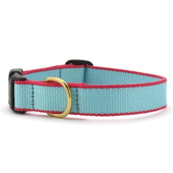 Aqua Green Collar available at Animal Care Sanctuary