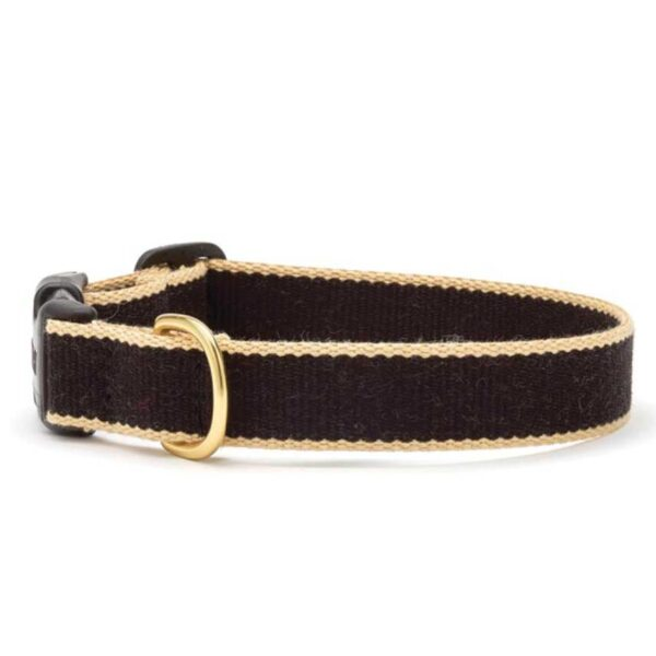 Black and Tan Dog Collar available at Animal Care Sanctuary