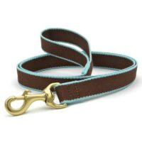 Green Market Brown and Aqua Leash at Animal Care Sanctuary