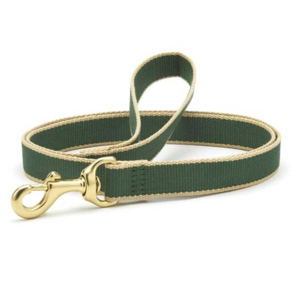 Forest and Tan Leash available at Animal Care Sanctuary