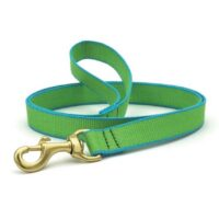 Green Market Lime and Aqua Leash available at Animal Care Sanctuary
