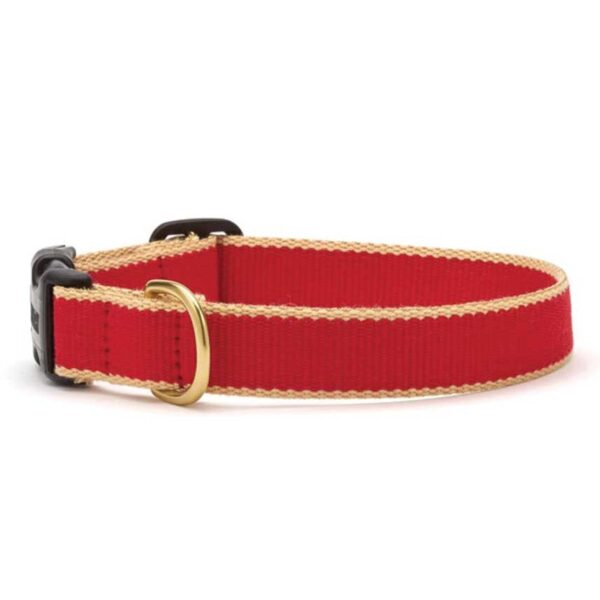 Green Market Red and Tan Dog Collar at Animal Care Sanctuary
