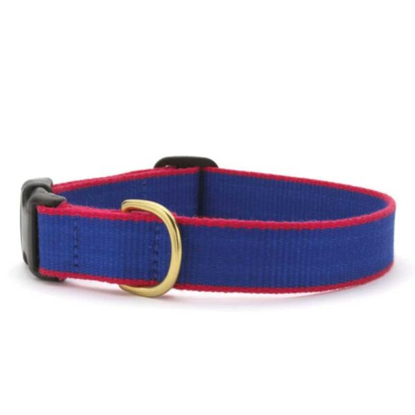 Green Market Royal Blue and Red Collar available at Animal Care Sanctuary