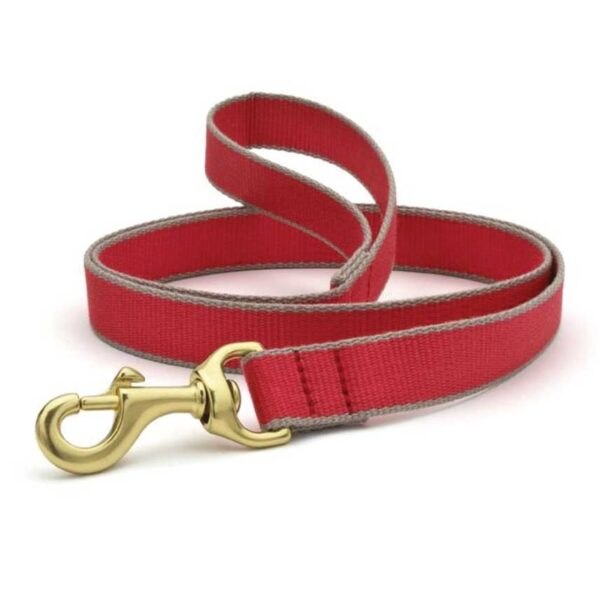 Green Market Red and Gray Leash