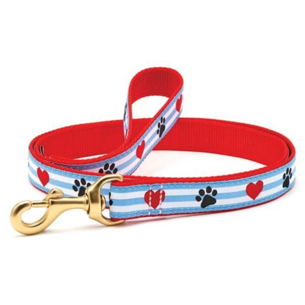Paw print stripe Leash available at Animal Care Sanctuary