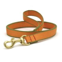Tangerine and Pine Green Leash available at Animal Care Sanctuary